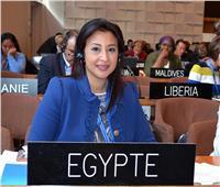 غادة عبد الباري أمينًا عامًا للجنة الوطنية المصرية للتربية والعلوم والثقافة
