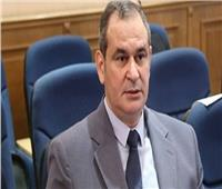 فيديو| اقتصادية البرلمان: نحتاج لإدارة محترفة للإستثمار فى مصر