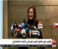 فيديو| وزيرة التخطيط: مصر تُطبق المعايير الدولية فى إجراء التعدادات الاقتصادية