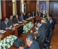 فحص 3 آلاف طلب من واضعي اليد للجنة تقنين أراضي الدولة بالإسكندرية