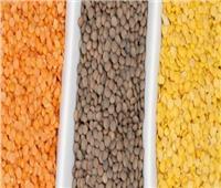 «الحاصلات الزراعية»: العدس الموجود بالأسواق «غير مسرطن»