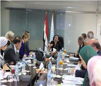 فؤاد: مصر قادرة على مواجهة التحديات التي تواجه تحقيق التنمية المستدامة