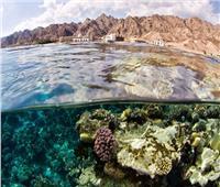 بالصور| «محمية أبو جالوم» كنز سياحي مهجور