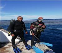 صور| تركيب وصيانة 1127 شمندور لحماية الشعاب المرجانية بالبحر الأحمر