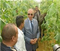صور|عبد الله : مزرعة وادي القويح.. نقلة بالقطاع الزراعي في البحر الأحمر