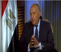 وزير الخارجية: مصر تسعى لإنهاء القضية الفلسطينية