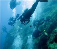 السياحة: تدريبات شاملة لجميع العاملين في مجال الغوص