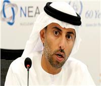 وزير الطاقة الإماراتي: هذا العام مهم لنا لمواصلة العمل لتنويع مصادر الطاقة