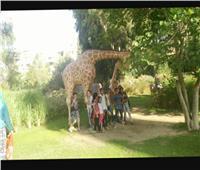 «اختار».. برنامج يطلقه متحف الطفل خلال أجازة منتصف العام الدراسي