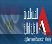 «الرقابة المالية» توافق على مد المهلة الممنوحة لشركة السادس من أكتوبر للتنمية