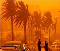 فيديو| «الأرصاد»: الرياح تصل إلى حد العاصفة على القاهرة.. الثلاثاء