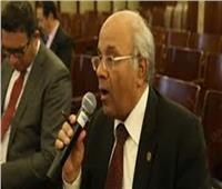 فيديو| برلماني: منع بيع الخمور في المحلات المصرية بالمدن والقرى