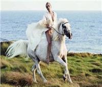 ليدي جاجا تبعث رسالة لحصانها «ارابيلا» على انستجرام