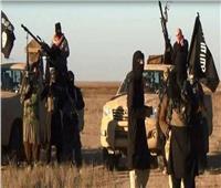 تنظيم داعش يجتاح بلدة في شمال شرق نيجيريا