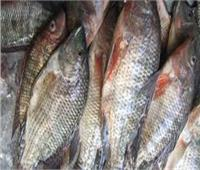 تعلمي كيف تفرقين بين أسماك المزارع والبلدية وقيمتهما الغذائية