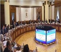 قرار هام من الحكومة بشأن مشروع «المليون ونصف فدان»