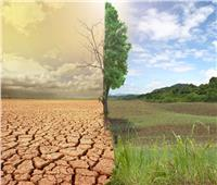 «الزراعة» تنظم دورات تدريبية للتعامل مع التغيرات المناخية