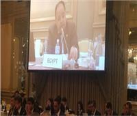 وزير المالية: مصر والاتحاد الأفريقي يساندان بقوة رئاسة اليابان لمجموعة العشرين