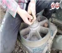 فيديو | «الستارة» أسرع نظام لزراعة البطاطس في المنوفية