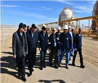 الملا: يجب الالتزام بزيادة إنتاج البترول والغاز لمواجهة التناقص الطبيعي
