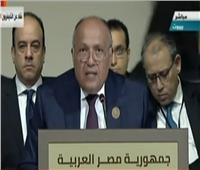 فيديو|وزير الخارجية: الدول العربية نجحت في تحرير التجارة الحرة