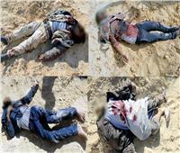 عاجل| القوات المسلحة تعلن مقتل 59 تكفيريا وتدمير 56 عربة دفع رباعي