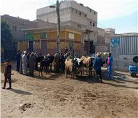 صور| مستقبل وطن: ينظم قافلة بيطرية لمساعدة القرى الاكثر احتياجًا بالمنيا