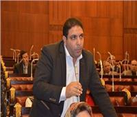 محمد الجمال: ضبط الأسعار قضية أمن قومي