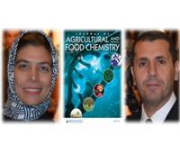 إشادة دولية ببحث مصري عن ترويض هرمون زراعي بتكنولوجيا النانو