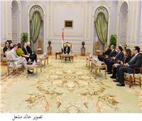 عبد العاليستقبل وفد مجموعة الصداقة الفرنسية المصرية