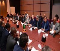 اختتام اجتماعات لجنة المنافذ البرية المصرية السودانية