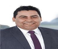 المهندس عادل حامد رئيسًا تنفيذيًا للمصرية للاتصالات