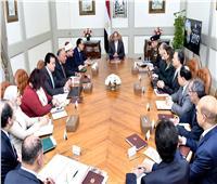 السيسي يستعرض خطة الإعداد لرئاسة مصر «الاتحاد الإفريقي»