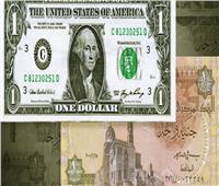 رئيس شعبة المستوردين يتوقع انخفاض قيمة الدولار أمام الجنيه