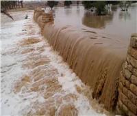 فيديو| «الري»: تجميع مياه السيول بخزانات للاستفادة منها