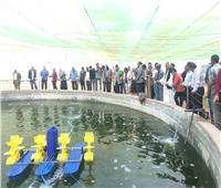 صور| تعرف على مشروع وادي حوضين للتنمية الزراعية المتكاملة بالشلاتين