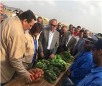 صور| الزراعة تفتتح مشروع النهوض بـ«الإبل» في شلاتين