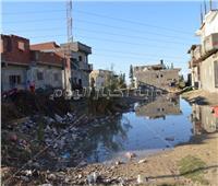 صور| «نجع عون» قرية حائرة بين البحيرة والإسكندرية
