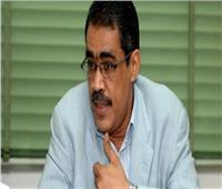 الاستعلامات تطلق موقعا إلكترونيا جديدا بمناسبة رئاسة مصر للاتحاد الأفريقي