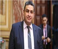 برلماني: مصر البوابة الرئيسة لأفريقيا ورئاسة الاتحاد تعزز التعاون المشترك