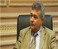 سياحة النواب: رصيد مصر بإفريقيا يسهل مهمة الرئيس السيسي فى رئاسة اتحادها