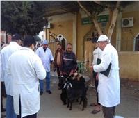 تنظيم قوافل طبية وبيطرية بقرى الإسماعيلية