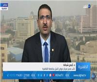 الفيديو| شبانة: مصر تتحرك بخطى ثابتة نحو استعادة  الريادة الأفريقية