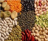 في اليوم العالمي للبقول.. «بروتين الفقراء» صحة وتغذية وتوازن بيئي