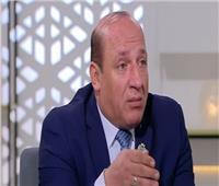 عماد الدين: رئاسة مصر للاتحاد الإفريقي دليل على قوة علاقاتها