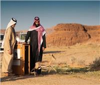 صور| محمد بن سلمان يطلق محمية شرعان الطبيعية في محافظة العلا