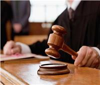 اليوم.. استئناف محاكمة المتهمين في قضية «ميكروباص حلوان»