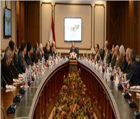 المصري  يلتقي ممثلي شركات الطيران الخاصة