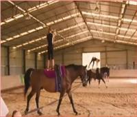 شاهد| الراقصون علي الخيل باستراليا يبهرون العالم