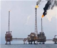 فيديو| «البترول»: مصر أصبحت منارة لاستكشاف الغاز في الشرق الأوسط